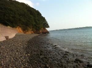 やっぱり海が好きだ~!